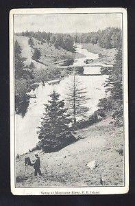 vintage postcard PEI