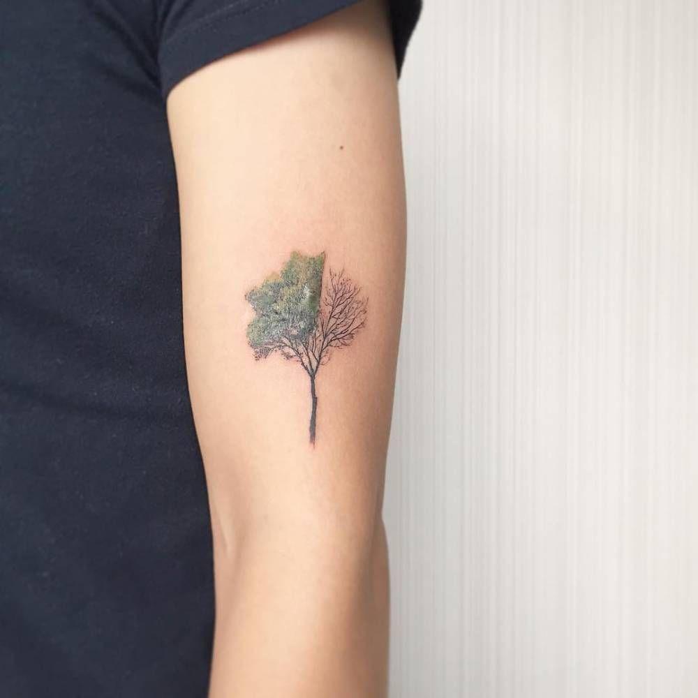 Tree Tattoo On The Left Upper Arm Olive Tree Tattoos Small Tattoos For Guys Tree Tattoo Small