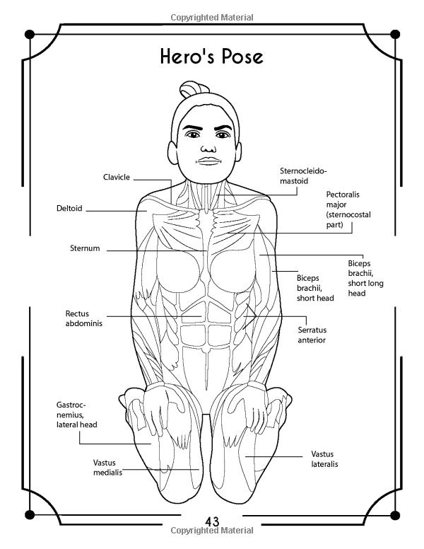 Yoga Anatomy Coloring Book A New View At Yoga Poses Elizabeth J Rochester 9781073535859 Amazon Com Book Yoga Anatomy Anatomy Coloring Book Coloring Books