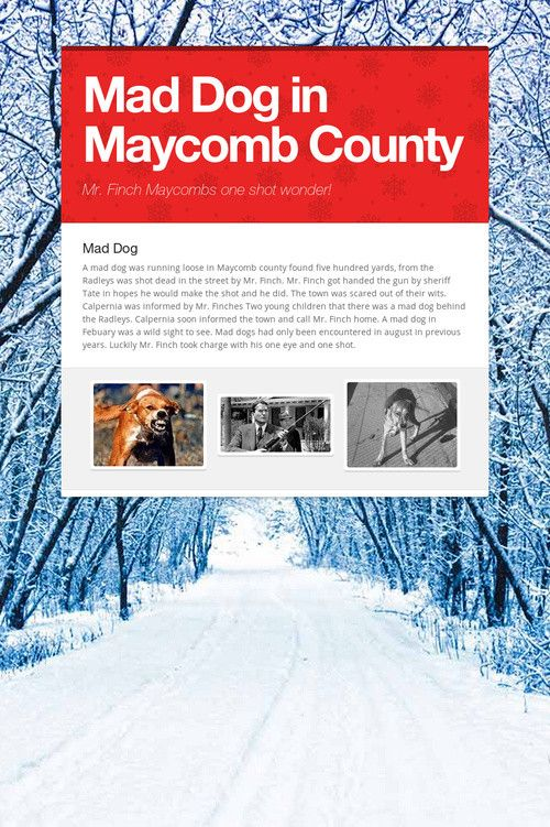 Maycomb County is full of woods in the backcountry | Maycomb County ...