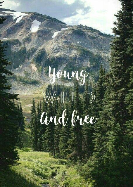 Young Wild F R E E Frases De Fondo De Escritorio