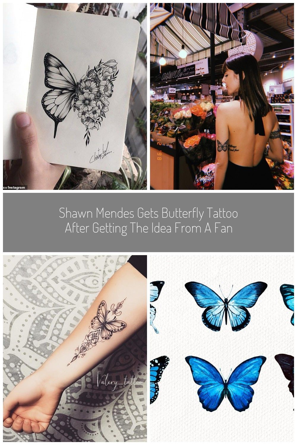 butterfly tattoo Shawn Mendes gets butterfly tattoo after