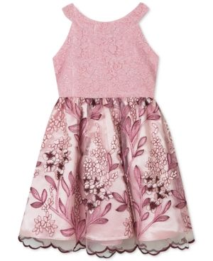 c4db3bc70 Rare Editions Toddler Girls Lace Embroidered Dress - Pink 4T ...