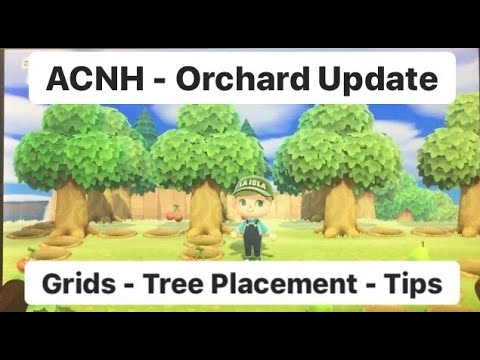 Ac New Horizons Huge Update On Planting Fruit Trees Everything You Need To Know Youtube In 2020 Fruit Trees Planting Fruit Trees Fruit Plants