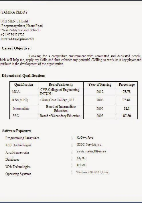 experience resume format pdf Sample Template Excellent Curriculum - resume format for mca