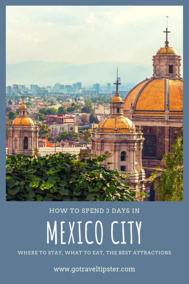 12 Awesome Things To Do In Mexico City