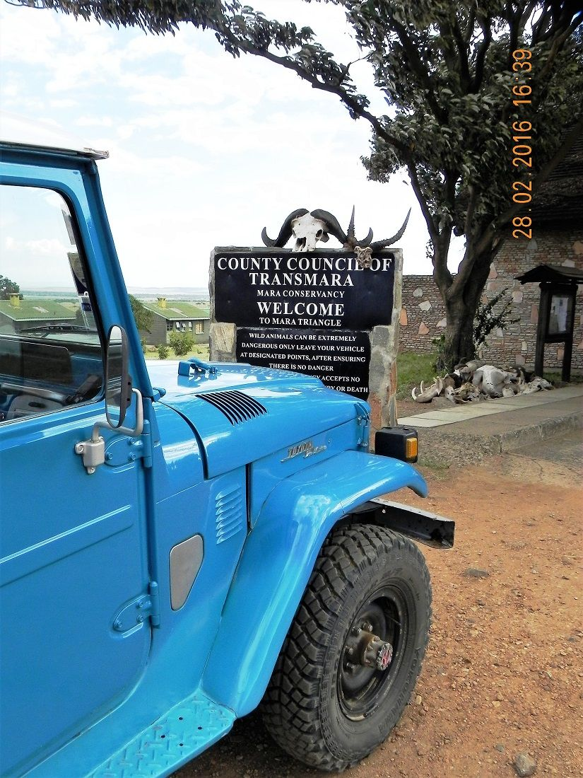 1978 Fj40 Landcruiser Doing Duty In Masai Mara Kenya In 2016