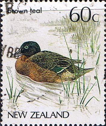 New Zealand 1982 Birds SG1291 Fine Used SG Scott 768 Other New Zealand Stamps HERE