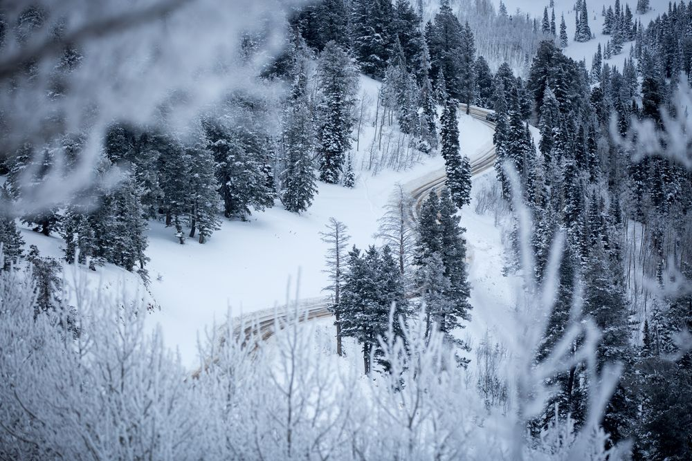 Road to Powder Snow Free Stock Photo Driving school