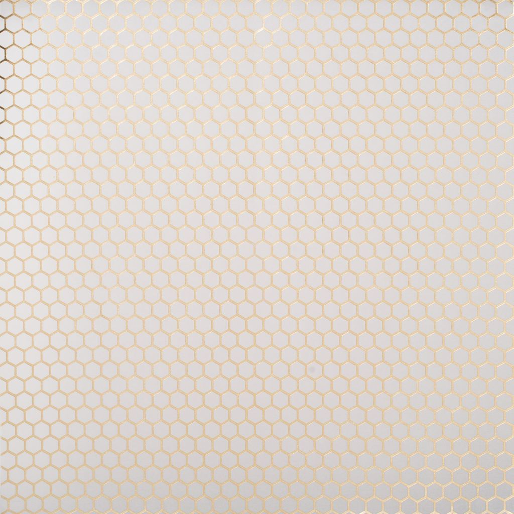Gold honeycomb vellum paper by recollections vellum paper get the gold honeycomb vellum paper by recollections at michaels dress up malvernweather Image collections
