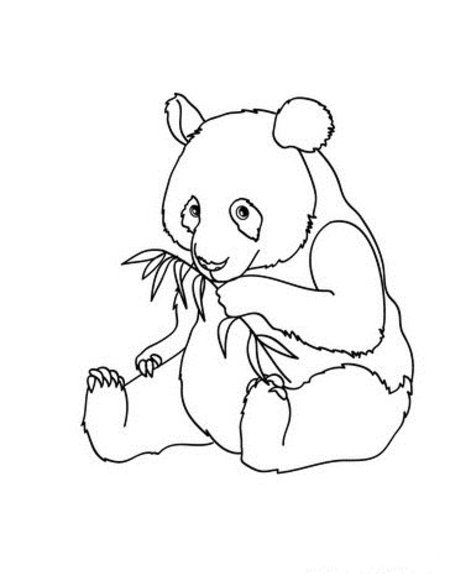 Panda Bear Coloring Page From Schoolfamily Com Bear Coloring Pages Panda Quilt Panda Craft