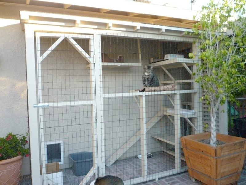 Cats enjoy being outside, but the outside world also poses significant known dangers and hazards that can harm and even kill your cat. An indoor/outdoor cat can easily be made a totally indoor cat …