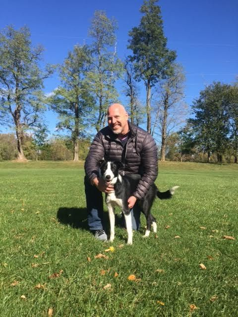 Recent Dog Training Graduate Rocco With Dan M From Lancaster