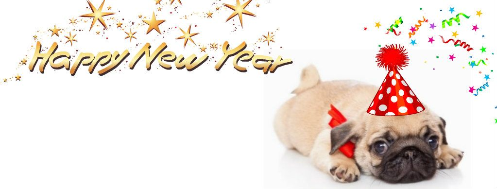 Pug Holiday Themed Facebook Cover Photos For Your Timeline Pug
