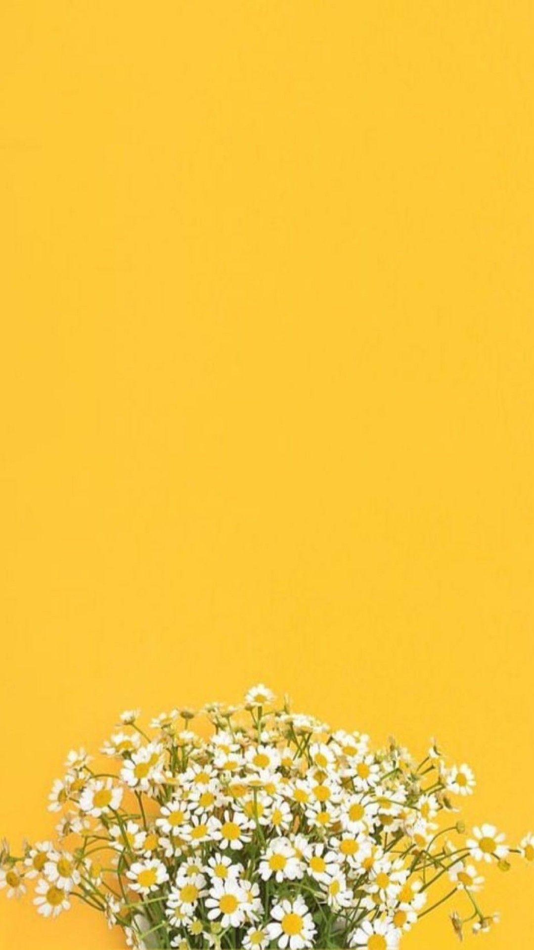 Pin By Jessa Lawas On Wallpaper In 2019 Sunflower Wallpaper Lock