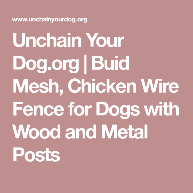 Unchain Your Dog Org