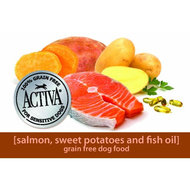 Activa grain free salmon sweet potato dog food