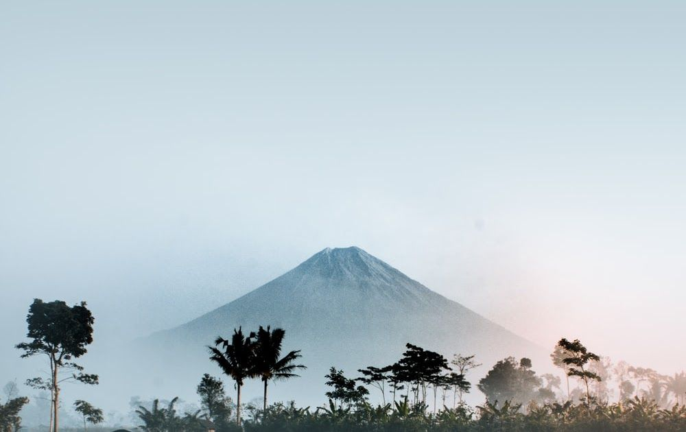 Fantastis 23 Gambar Wallpaper Hutan Hd 500 Stunning Indonesia Pictures Download Free Images On Forest Green Landscape Road Di 2020 Pemandangan Latar Belakang Gambar