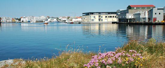 Parti fra Åkrehamn havn
