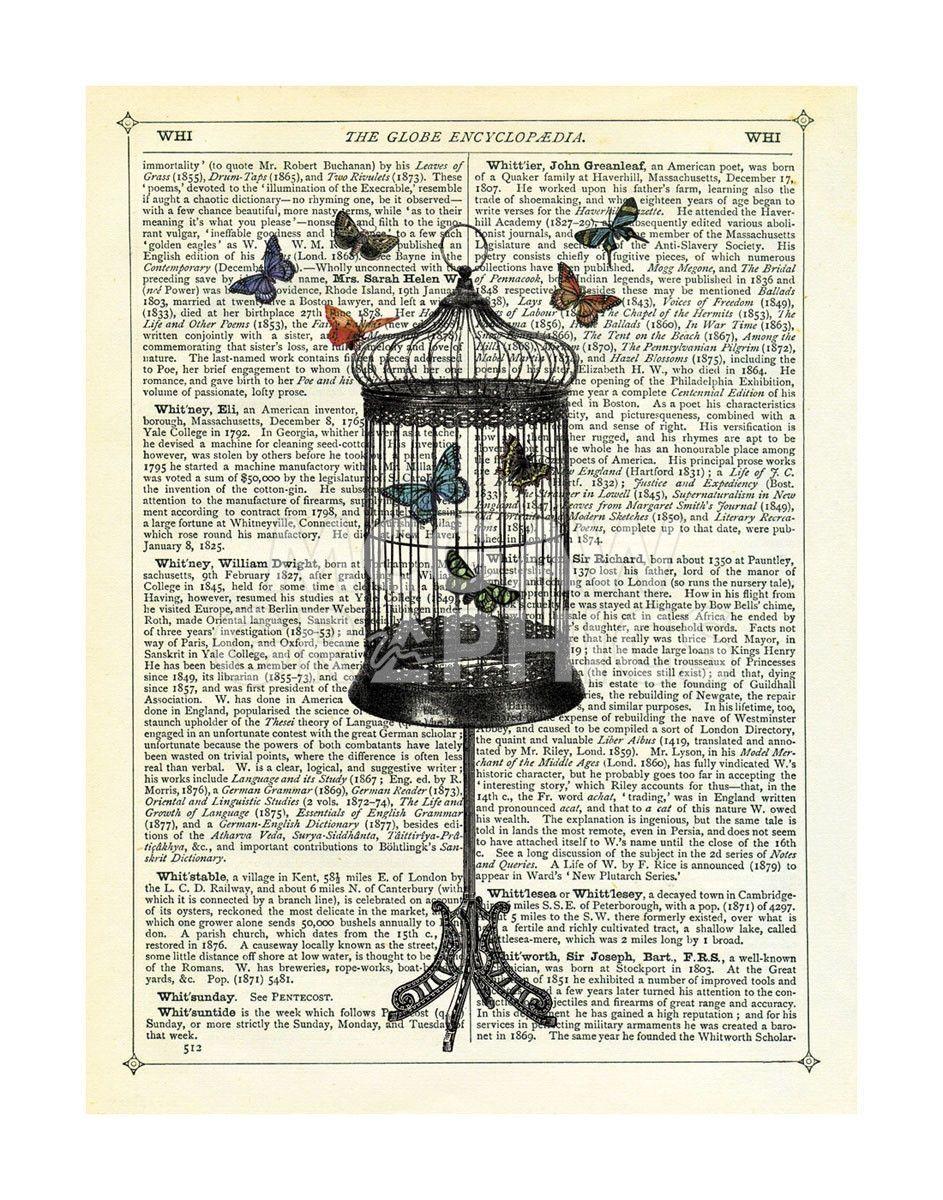 Bird Cage Butterflies Butterfly Art Print Butterfly Wall Art Butterfly Canvas