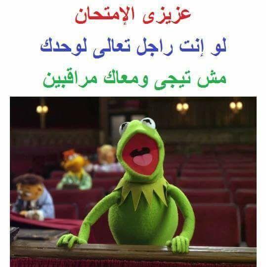 Funny Qoutes Funny Picture Jokes Arabic Funny