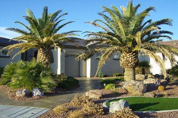 Front Yard Desert Landscape Ideas Desert Home Landscaping Ideas Palm Trees Landscaping Desert Landscaping Front Yard Landscaping