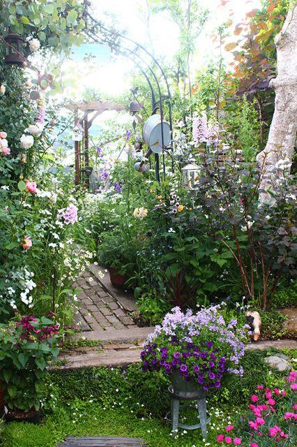 可憐な花々と 野原 のような庭を目指して 121 オルラヤさん 庭 美しい庭 ガーデンプラン