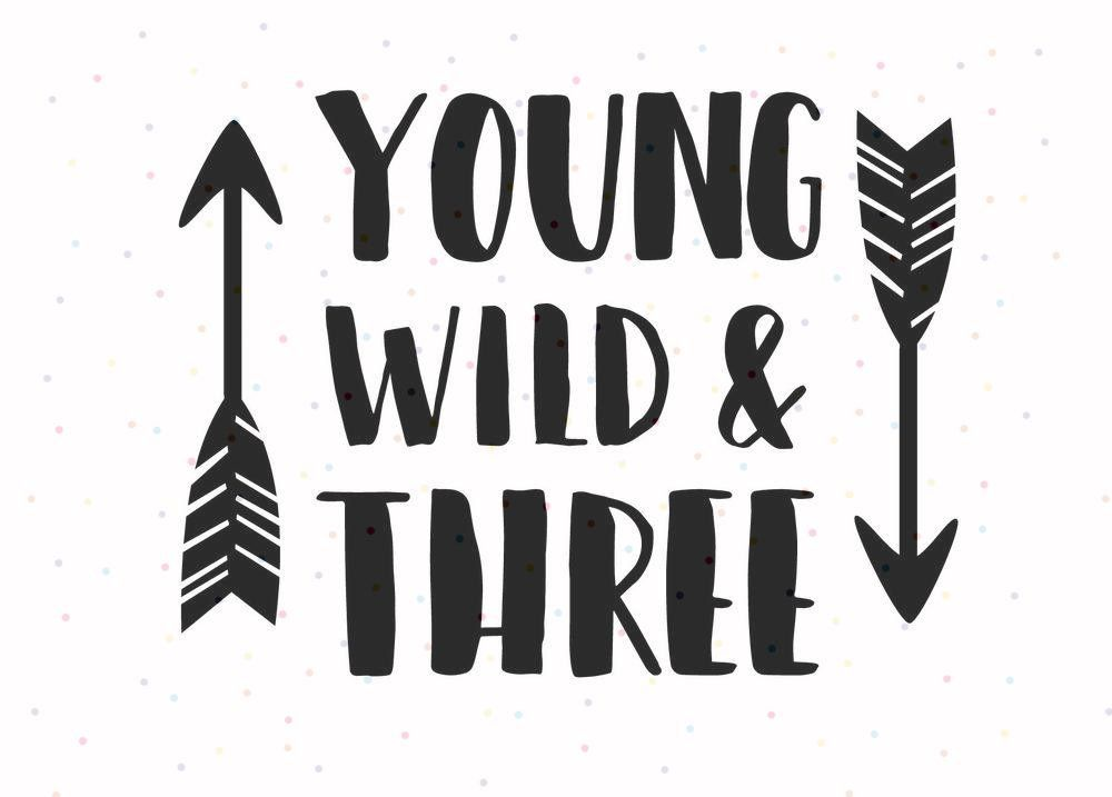 Wild and Three 3rd Birthday Boys Girls Kids T-shirt Other colours Young