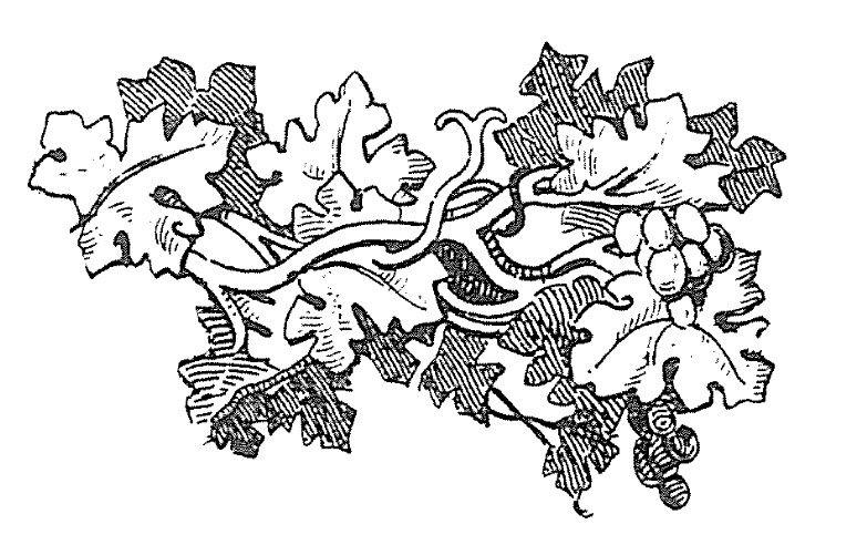Wood engraving template gidiyedformapolitica wood engraving template spiritdancerdesigns Gallery