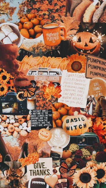 Vsco Fall Autumn Collage Cambreyjohnson Osennie Tykvy Hellouin Kartiny Tykvy