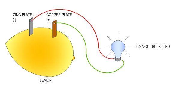 Make A Lightbulb Light Up Using Lemon