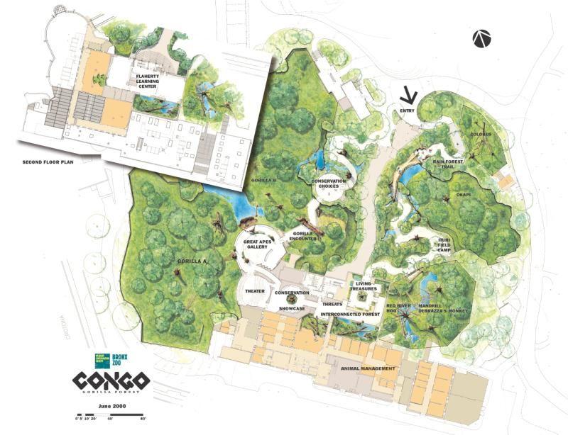 jacksonville zoo manatee Google Search zoo ideas Pinterest