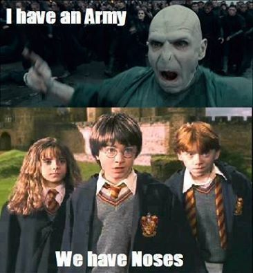 I Have An Army We Have Noses Harry Potter Jokes Harry Potter Memes Harry Potter Memes Hilarious
