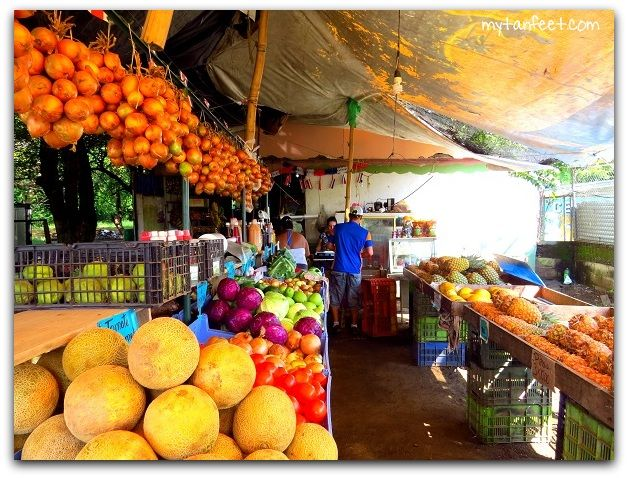Fruit and Vegetable Stands in Playas del Coco | Costa Rica ...