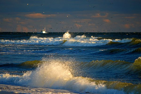 Fishing The Deep Blue Sea By Dianne Cowen Splashing Water Photography Sea Photo Beautiful Photography Nature