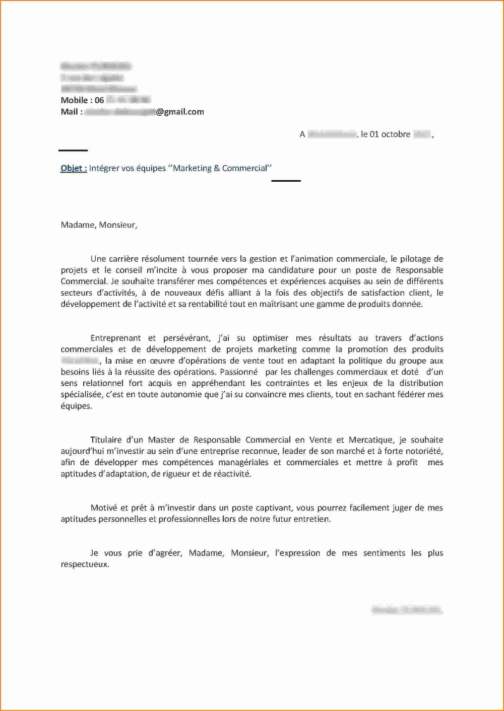 Lettre De Motivation Sans Diplome Et Sans Experience : lettre, motivation, diplome, experience, Modèle, Lettre, Motivation, Vision, Vente, Conseil, Recherche, Google, Reference, Letter, Student,, Templates,, Motivational