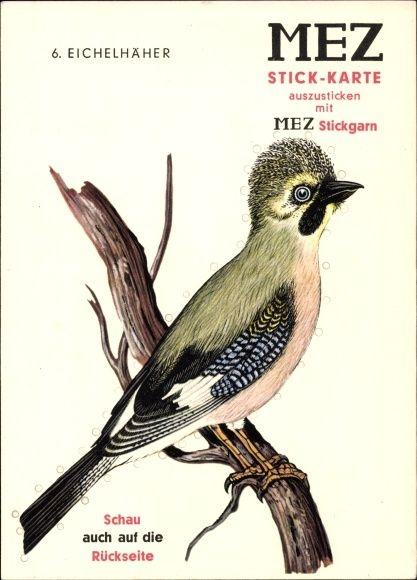 ansichtskarte postkarte eichelh her garrulus glandarius singvogel familie der rabenv gel. Black Bedroom Furniture Sets. Home Design Ideas