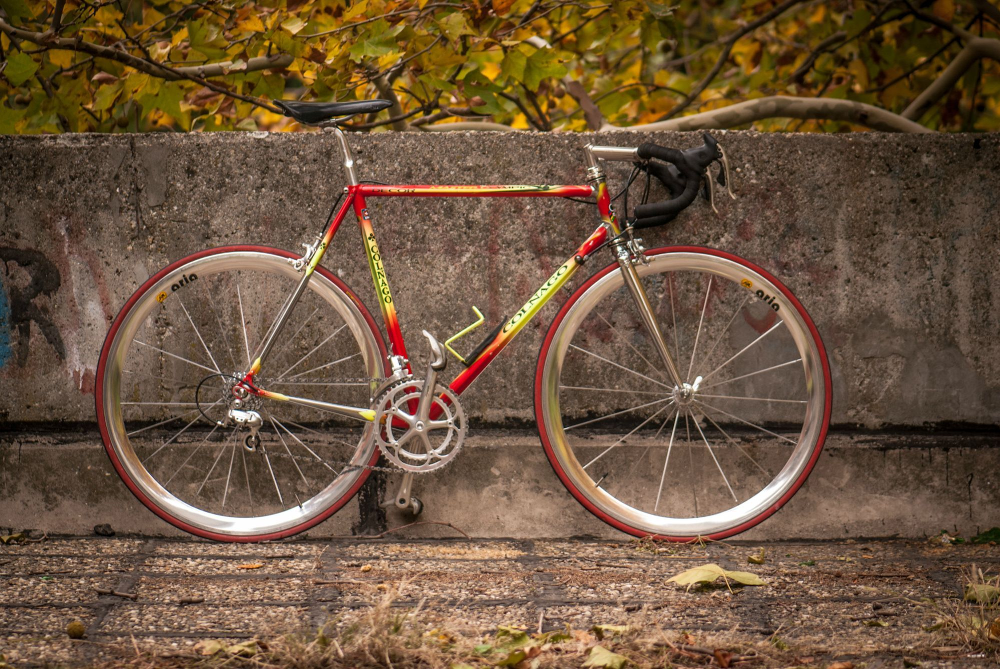 Colnago ♧ Master Olympic Art Decor | Colnago ♧ Only | Pinterest