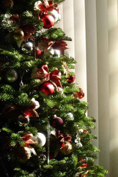 Escoger entre un rbol de Navidad Natural y Artificial Pinterest