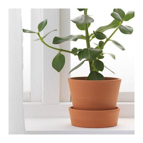 IngefÄra Plant Pot With Saucer Outdoor Terracotta 4 ¾ Ikea