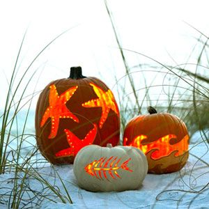 Carve A Coastal Pumpkin With Images Pumpkin Carving