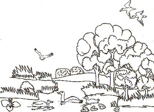 Two Rabbits In Cabbage Garden In Gardening Coloring Pages Bulk Color Coloring Pages Garden Coloring Pages Easter Coloring Pages
