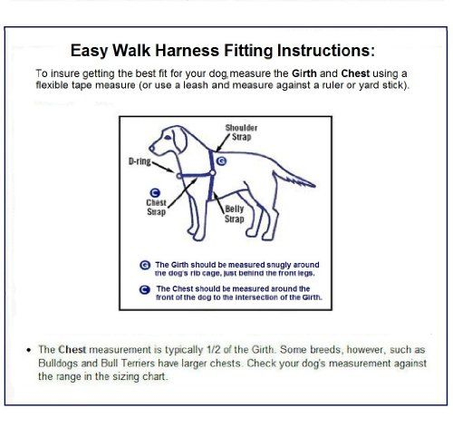 Dog Training Rewards Inner Secrets Dog Harness Dog Leash Dogs