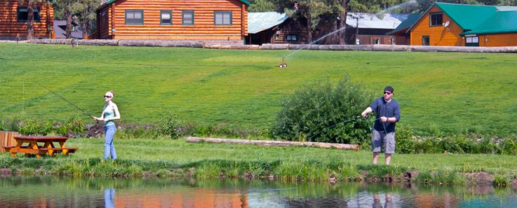 greer rental at near the cabin mly arizona marmaduke rentals snow cabins ranch