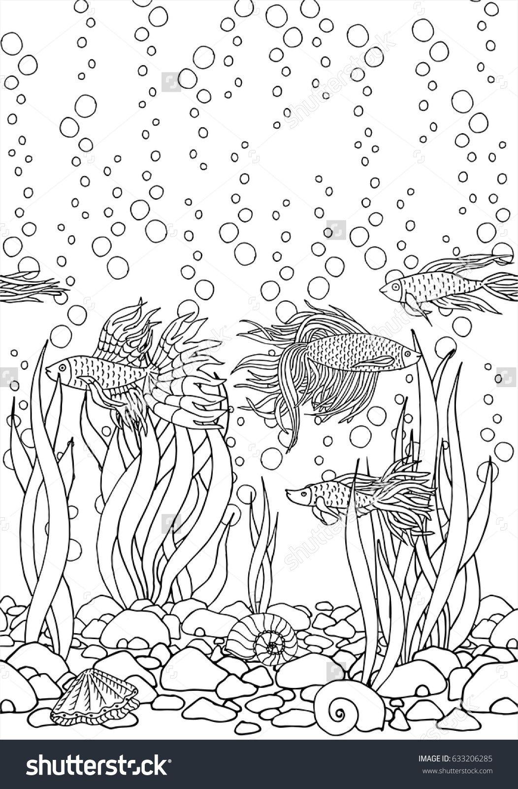 Hand Drawn Vector Fish Seaweed Seashells Stones Beautiful Aquarium Betta River Sea Black And White Drawing By Line Art