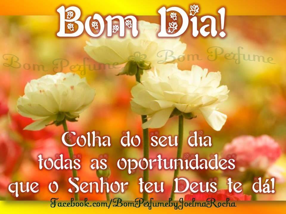 Www Bom Dia Amigos Do Face Book Com Bom Dia Tenha Uma Otima