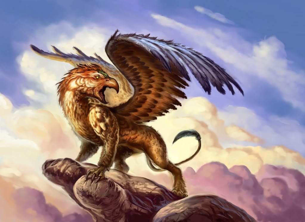 Fabelwesen bilder drachen und andere fabelwesen bilder for The griffin