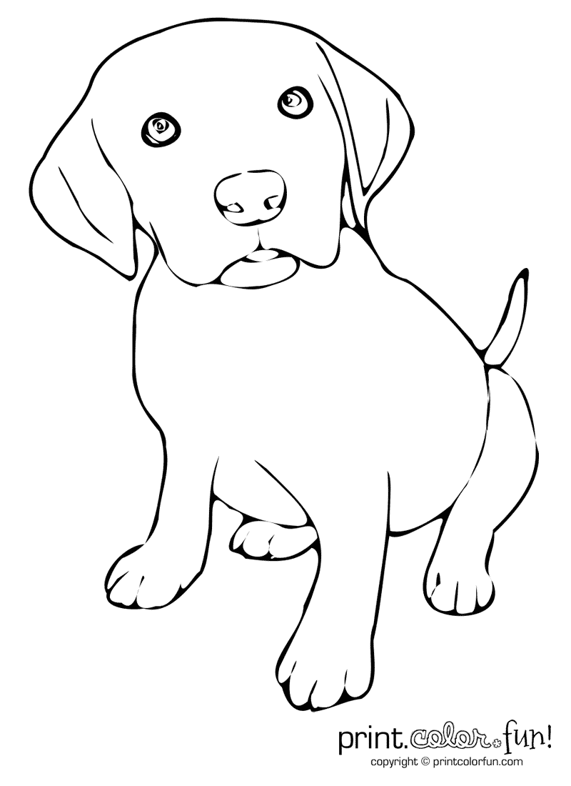 Download And Print Your Page Here Puppy Coloring Pages Dog Line Art Dog Coloring Page