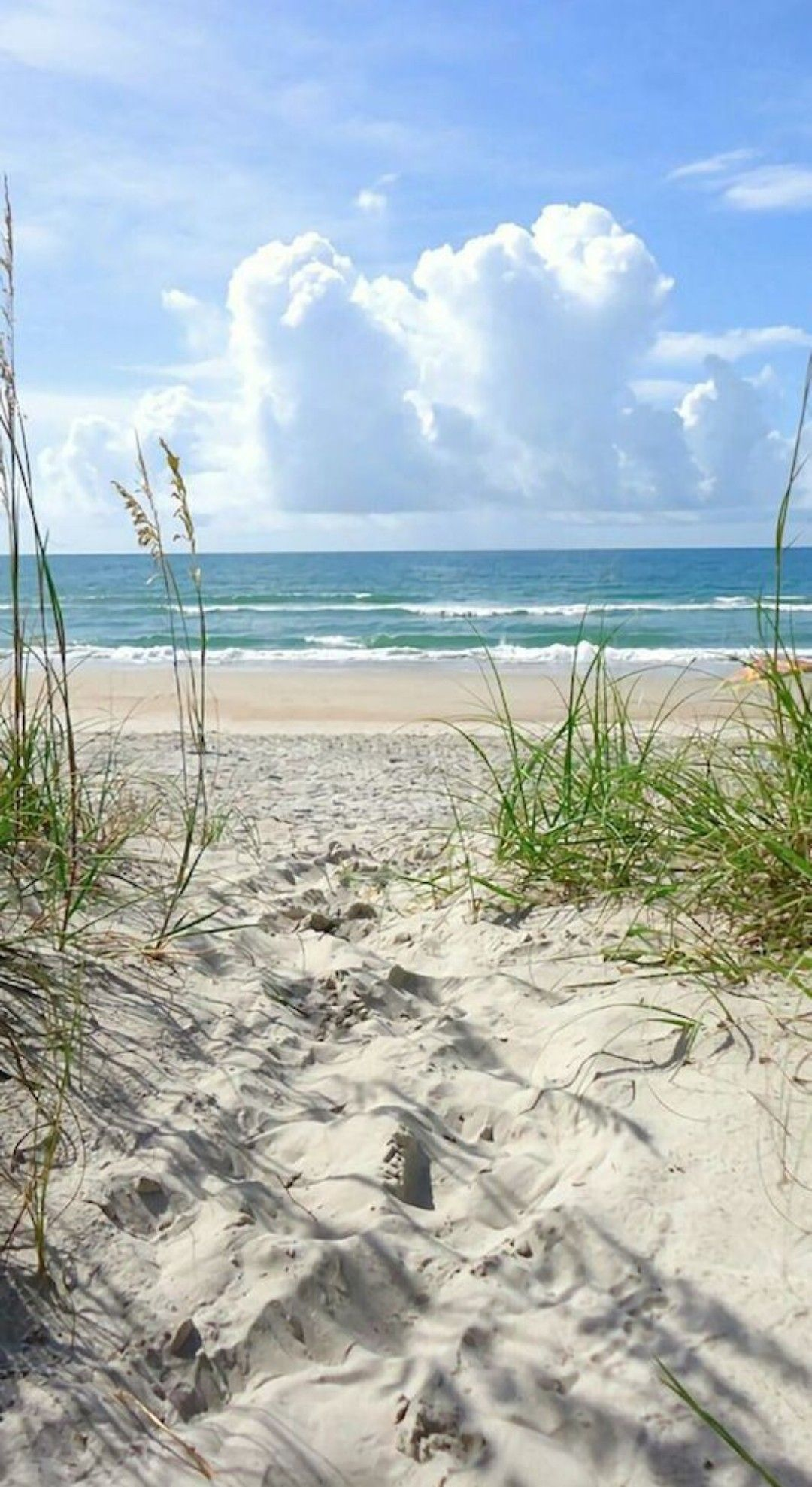 347fbecd7 Pin by Lorraine P on Waiting for a beach vacation in 2019 | Beach, Beach  photos, Beach Pictures