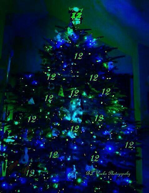 Seahawks Christmas Lights.Seahawk Tree Seattle Seahawks Seattle Seahawks